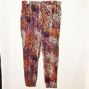 Capsule Jogger Pants Animal Print Multi Color